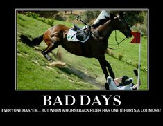 Equestrian Memes had one of those today. Funny Horse Memes, Funny Horses, Cute Horses, Horse Love, Beautiful Horses, Horse Humor, Animals Beautiful, Funny Animals, Funny Memes