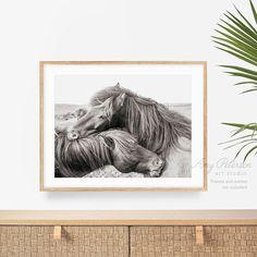 Two Horses Hugging Art Print Horse Love Black & White   Etsy