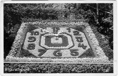 Ak Zittau Blumenuhr 1937, Kleinformat