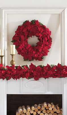Our indoor Poinsettia Collection is bursting with the iconic red leaves that have come to symbolize the holidays.