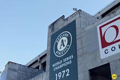 EMY Cursos en el extranjero #EMYCURSOS #CursosIngles Aprender inglés en Estados Unidos, programas de inmersión en familia con clases y actividades. #BaseballGame Oakland A's