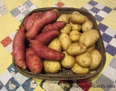 We all love a great salad, but to really use our gardens for a well-rounded diet, we need to grow some calories. Potatoes -- sweet and otherwise -- are a great way to go. From MOTHER EARTH NEWS magazine.
