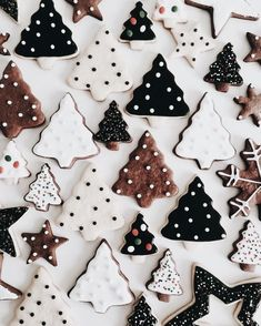 Try our Christmas advent biscuits recipe. Make super simple homemade gingerbread Advent biscuits for Christmas with this easy Christmas cookie recipe. Christmas Tree Cookies, Christmas Mood, Merry Little Christmas, Noel Christmas, Christmas Treats, Christmas Baking, Christmas Decorations, Christmas Lights, Xmas Cookies