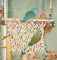 make a beaded net for your beloved birdie to climb on and tear up! Diy Parrot Toys, Diy Bird Toys, Pet Bird Cage, Bird Cages, Small Birds, Pet Birds, Homemade Bird Toys, Budgie Toys, Budgies
