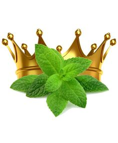 Buy Mint King E Liquid only This Mint King E Liquid is made from natural mint extracts including peppermint oil and spearmint oil. Mint Extract, Giving Up Smoking, Vape, Peppermint, Christmas Ornaments, Cigarette Smoke, Holiday Decor, Bad Breath, Stuff To Buy