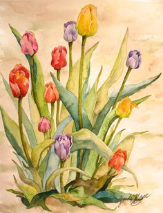 tulips multicolored  original watercolor by DakotaPrairieStudio, $95.00