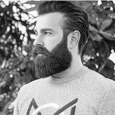 Beards Of Instagram