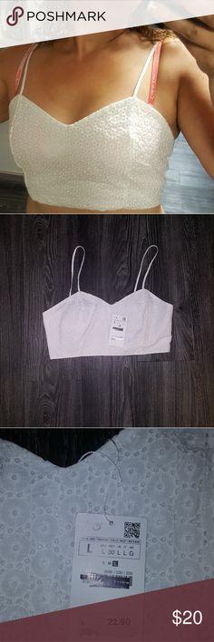 b7899e5d0b0 ZARA Crop Top NEW Eyelet style with silver back zipper Sz lrg Zara Tops  Crop Tops