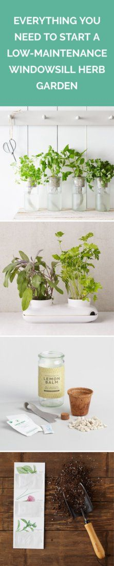 Everything You Need to Start a Low-Maintenance Windowsill Herb Garden   No green thumb necessary.