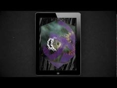 Forss -Ecclesia App Preview / Church noises + electronic music by Eric Wahlforss