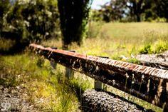 Catalina Park – Hidden Race Track in Katoomba, Blue Mountains