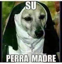 Su perra madre