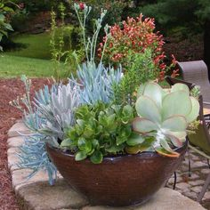 Container Gardening Ideas Beautiful succulent planter - Jeff Calton decided he was definitely NOT done sharing his container designs after Monday's post, so he went out and took more photos, and I'm so glad he did! Jeff, what CAN'T you do? Indoor Plants, Plants, Planting Flowers, Fine Gardening, Succulents, Garden Planters, Container Gardening, Garden, Garden Pots
