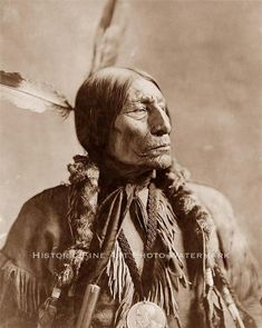 CHIEF WOLF ROBE CHEYENNE VINTAGE PHOTO NATIVE AMERICAN INDIAN 1904 - 20844