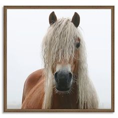 Framed Prints - Horses #westelm