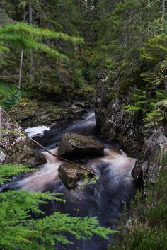 EarthPorn is your community of landscape photographers and those who appreciate the natural beauty of our home planet. Cairngorms, National Photography, Image Editing, Single Image, Landscape Photographers, Mother Earth, Natural Beauty, Scotland, Waterfall