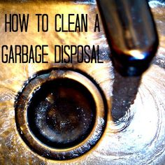 How to clean a garbage disposal - Cleaning Tips
