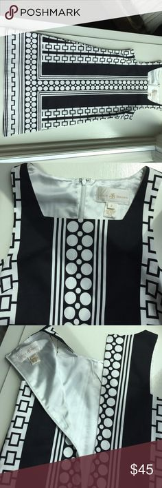~~NEW LISTING  JB Julie Brown Dress Black and white dress with satiny lining and back zipper. The dress is next to new  and free if stains and markings. Perfect for summer outings! Dresses