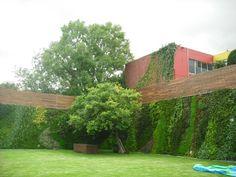verde 360º  los muros verdes son tridimensionales