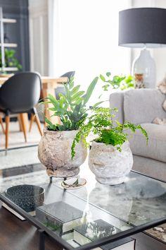 How to make an antique faux concrete planter Diy Painted Vases, Annie Sloan Furniture, Bedroom Decor For Small Rooms, Concrete Planters, Vintage Pottery, Cute Crafts, Diy Painting, Decoration, Flower Pots