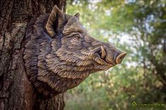 Large Wild Boar head was completed. The Digital sculpture once again reworked. Finally, we have come to the decision regarding the faux metal painting technology (antique bronze). Wild Boar Image, Pig Art, Woodcarving, Wall Sculptures, Canes, Hercules, Wildlife, Elephant, Bronze