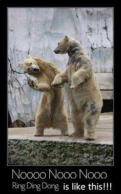 SHINee- bwahahaaaaahaaa!!!! This is just...great ;) haha