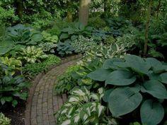 Garden With Walkway And Hostas