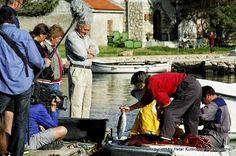 Ilovik .. near island Losinj .. Croatia