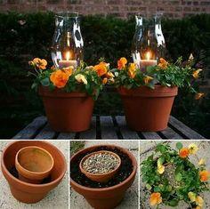 Flower pot w hurricane lamp