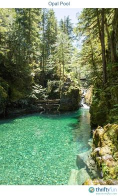 Opal Creek runs through thousands of acres of protected old growth forest, crisscrossed with over 30 miles of hiking trails.