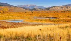 Yellowstone's Lamar Valley in Autumn
