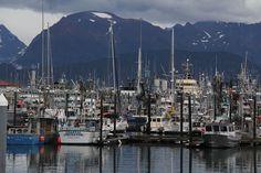 Girl Meets Globe: Travel Tuesday: Homer, Alaska
