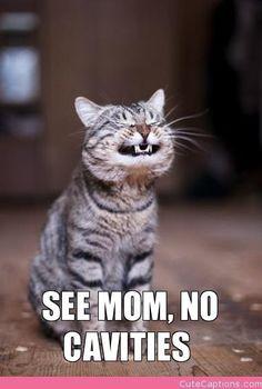 See Mom, No Cavities.