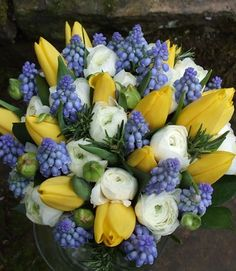 A vision of Spring using traditional Spring flowers in a neat hand tied bridal bouquet: Muscari, ivory Ranunculus and the fabulous yellow Yokohama tulips offset perfectly by broad ruscus foliage. The bouquet was finished with sprigs of rosemary to give a wonderful fragrance and the stems were bound with ivory satin ribbon fastened with gold headed pins.
