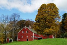 Vermont hosts a colorful array of fall foliage that you simply must see. The autumn colors of VT are both stunning and spectacular.
