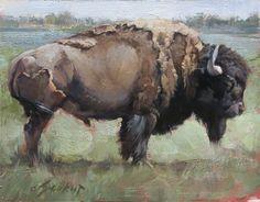 """Lone Bull Standing"" by Jill Soukup"