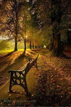Autumn In The Park by Gregory McStraw / Fall Pictures, Nature Pictures, Beautiful World, Beautiful Images, Autumn Scenes, Autumn Photography, Image Hd, Nature Scenes, Belle Photo