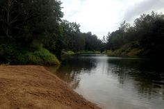 Bunya Crossing reserve - one of 5 secrets of Brisbane. Swimming, BBQ, hiking
