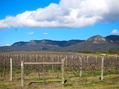 Brokenback Mountains Pokolbin Hunter Valley