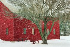 """The bright color and falling snow give the old milking barn in """"Little Red in Winter"""" by Nikolyn McDonald an old-fashioned, festive look. rural,rustic,farm,country,vintage,nebraska,Midwest,seasons,christmas,nikki,nikolyn,mcdonald"""