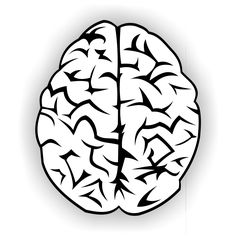 PTSD Symptoms: How Trauma Affects the Brain - PTSD & PTSD Symptoms are real and real science says you can't just get over it. Here are 3 important facts on how trauma affects the brain. Ptsd Awareness, Mental Health Awareness, Infp, Brain Vector, Ptsd Symptoms, Free Your Mind, Image Clipart, Complex Ptsd, Sons