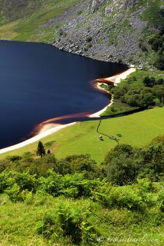 Guinness Lake shoreline - Lough Tay, Wicklow. Ireland.
