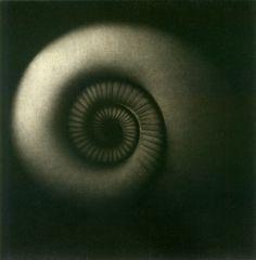 photograph byKouki Tsuritani  Labyrinth Mezzotint on Chine-colle, 2004
