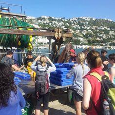 Cada viernes visita el #puerto de #pesca de Roses y verás la llegada de las barcas y la subasta, reserva tu plaza en la Oficina de Turismo! #VisitRoses #inCostabrava #pescadorsderoses #catalunyaexperience #descobreixcatalunya #poblescatalans #visitspain