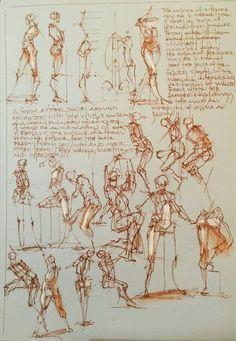 Gesture Drawing, Human Anatomy Drawing, Body Drawing, Anatomy Art, Life Drawing, Figure Drawing Reference, Art Reference Poses, Anatomy Reference, Anatomy Tutorial