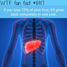 20 WTF FACTS IN YOUR FACE THAT WILL FRY YOUR BRAIN