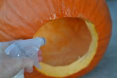 preserve your carved pumpkin! Makes it last for at least 14 days! *And another tip: If you place a lit candle inside your pumpkin be sure to coat the lid with ground cinnamon, nutmeg or pumpkin pie spice. It makes for a great smell! Halloween Pumpkins, Halloween Crafts, Holiday Crafts, Holiday Fun, Halloween Decorations, Halloween Party, Halloween Stuff, Holiday Ideas, Halloween Stencils