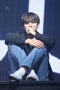 Woozi, Wonwoo, Jeonghan, The8, Seungkwan, Mingyu Seventeen, Seventeen Debut, Vernon, Hip Hop