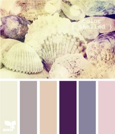 Color Shelled. #colors #palettes #combos