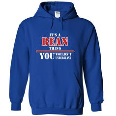 [Popular Tshirt name printing] Its a BEAN Thing You Wouldnt Understand Shirts of month Hoodies Tee Shirts